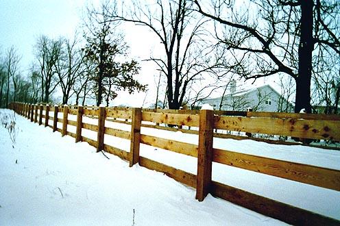 Wood Rail